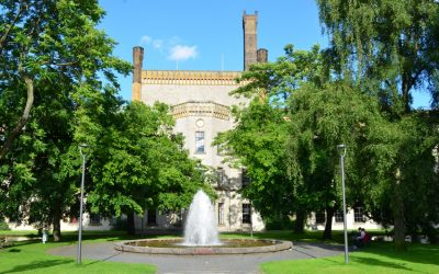 Vermüllung der Parkanlage am Museum Huelsmann – offener Brief an Frau Ritschel