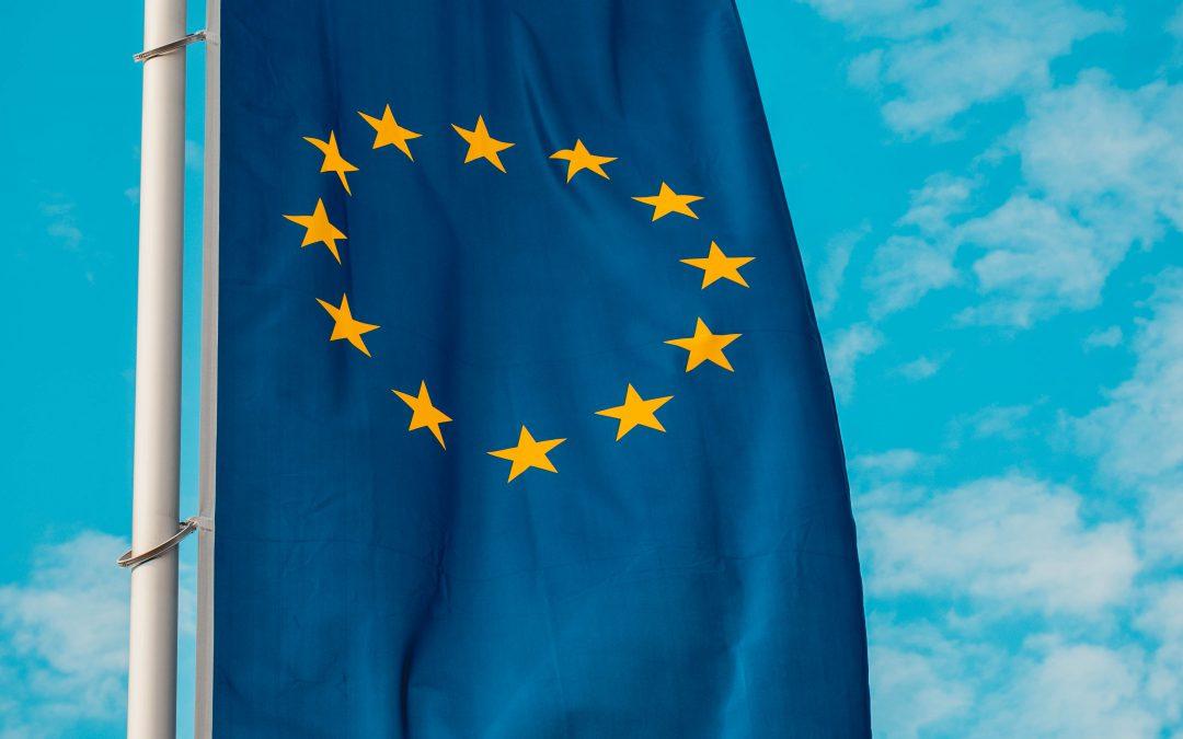 Kommentar zur Nominierung von Birgit Ernst zur Europawahl